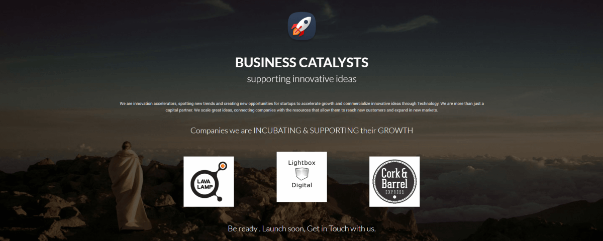 business catalysts consulting